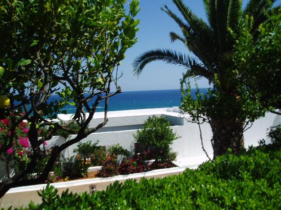 King Minos Palace Hotel: Hotel grounds