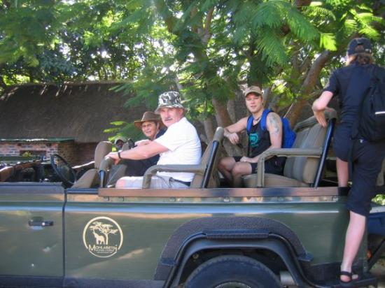 Eftermiddags safari - Picture of Kruger National Park, South