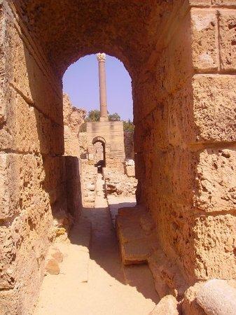 Foto de Túnez