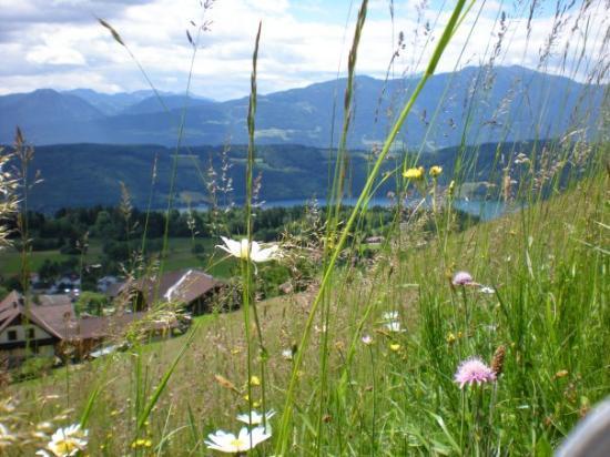 Millstatt صورة فوتوغرافية