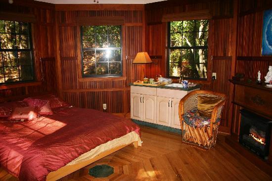 Sacred Springs Retreat and B&B : Creekside cottage