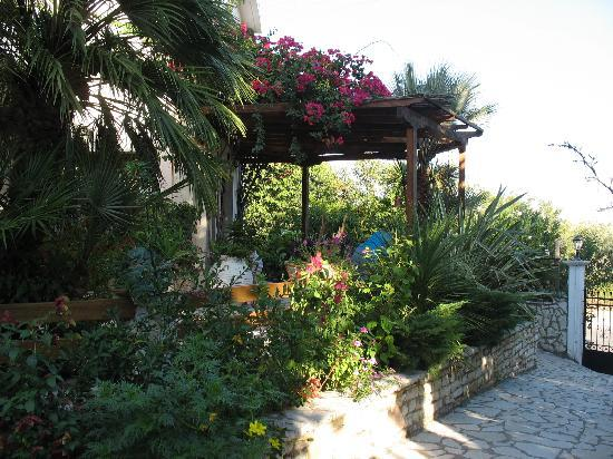Philippos Hotel Apartments: Garden