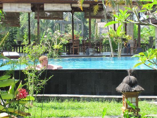 Sugars Villas: Sugars pool