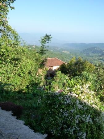 Puri Lumbung Cottages: Notre vue depuis le cottate au Puri Lumbung