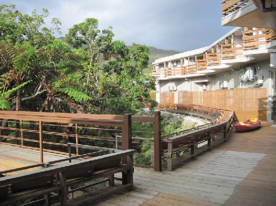 Jungle Hotel Painu Maya: ジャングルに面した部屋