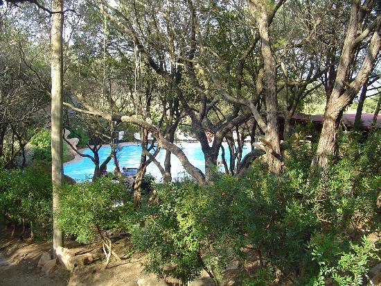 Rocce Sarde Hotel: la piscine vue du sous bois