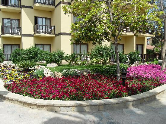 Alba Resort Hotel: The lovely kept flower beds