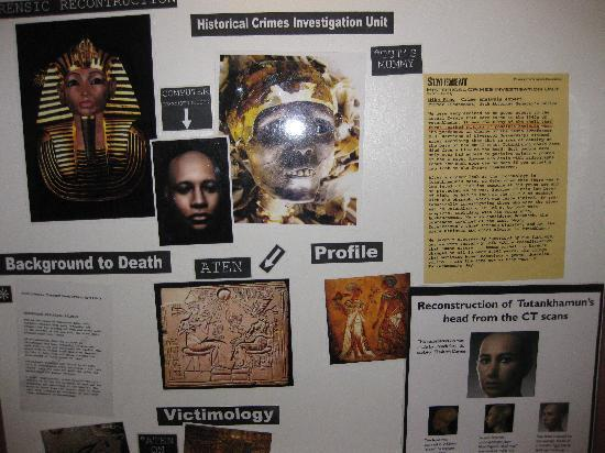 Tutankhamun Exhibition: Plenty to see
