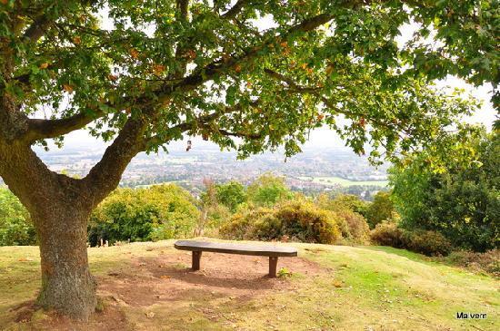 Cropvale Farm: Malvern Hills 30  mins away