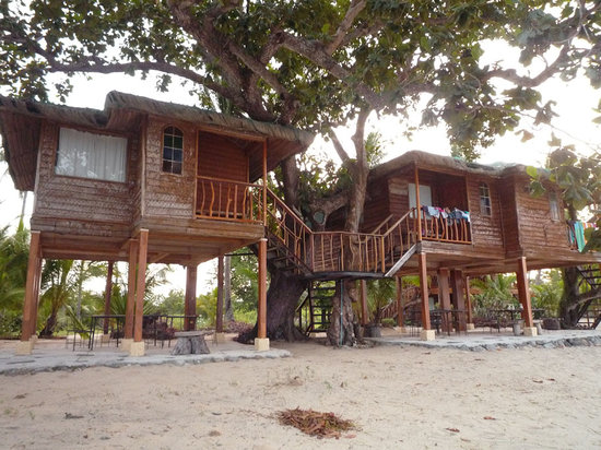 Batangas Province, Philippines: Our Lovely Tree House