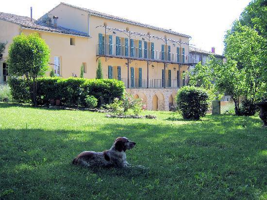 Malaucene, França: Domaine des Tilleuls