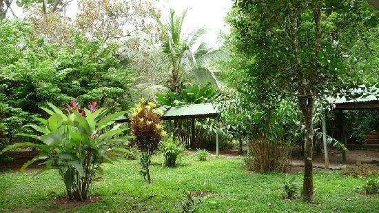 Le jardin magnifique photo de chilamate rainforest eco for Location jardin 78