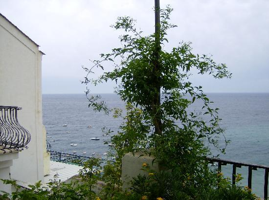 Villa Rosa: The view to the left from our terrace