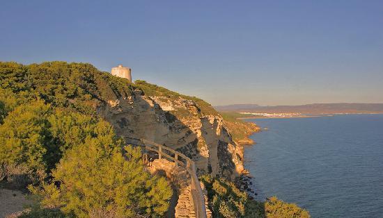 El Palomar de la Brena: The nearby cliffs along from Barbate and the Torre de Tajo