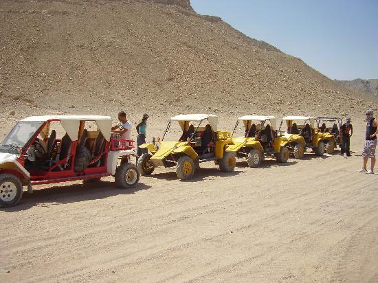 Fort Arabesque Resort, Spa & Villas: Sand buggies