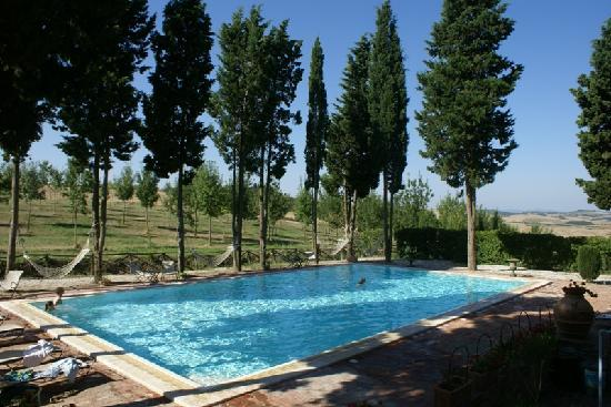 Aia Vecchia di Montalceto: The swimming pool.