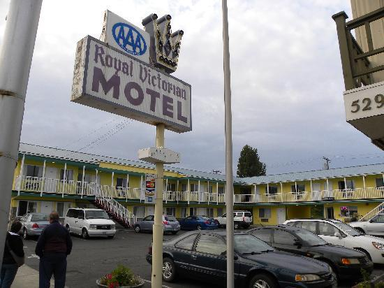 Royal Victorian Motel: The Royal Victorian