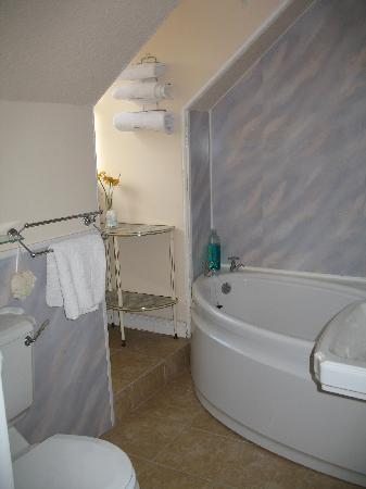 Ashbank Guest House: Bathroom
