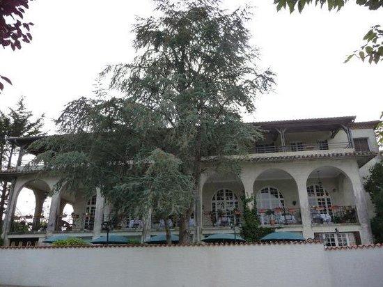Les Fleurs de Lys : photo de l'hotel vue du parking