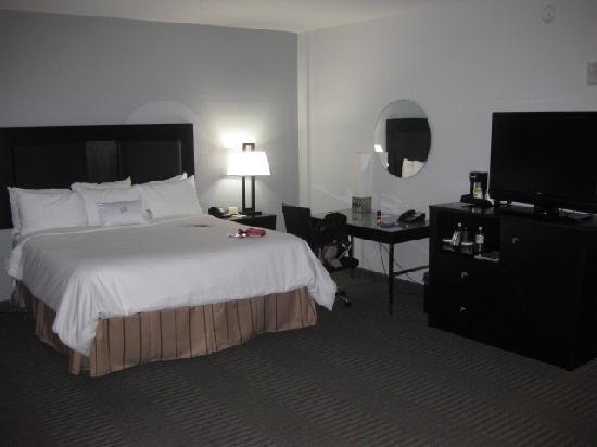 Crowne Plaza Tampa Westshore: 11th floor room