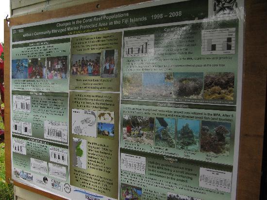 Waitabu Marine Park: Waitabu Marine Conservation Poster