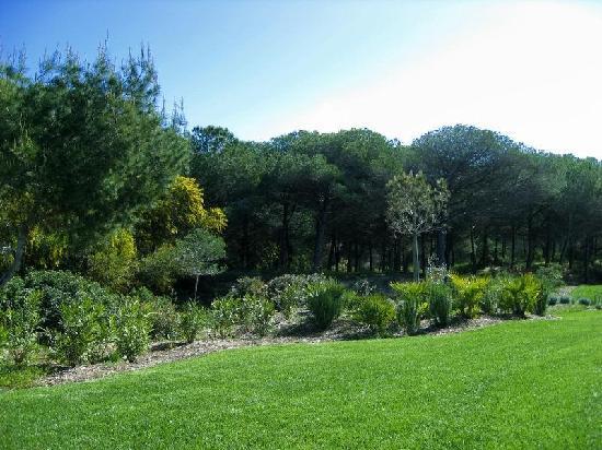 Is Arenas Resort: immersi nel verde e negli aromi della macchia mediterranea