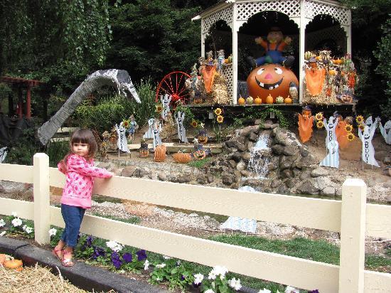 Lemos Farm : A bounty of harvest decorations!