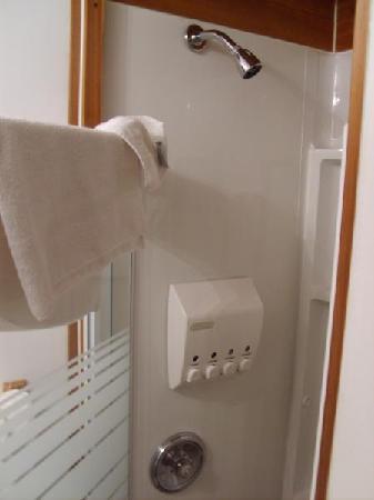 Albert House Inn: Shower