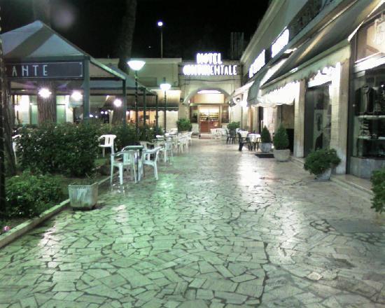 Hotel Continentale: l'ingresso, sui giardini della piazza, accanto al bar