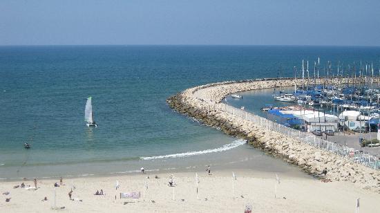 คราวน์พลาซ่า เทลอาวีฟ: View of Marina and beach from our Crowne Plaza room