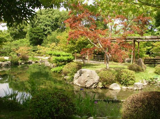 Tokio, Japan: a tranquil moment