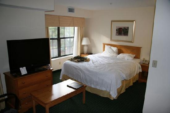 Residence Inn Durango CO Bed and TV