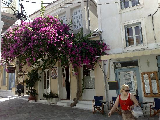 Dimitra Boutique Hotel : Lovely bourgainvillea