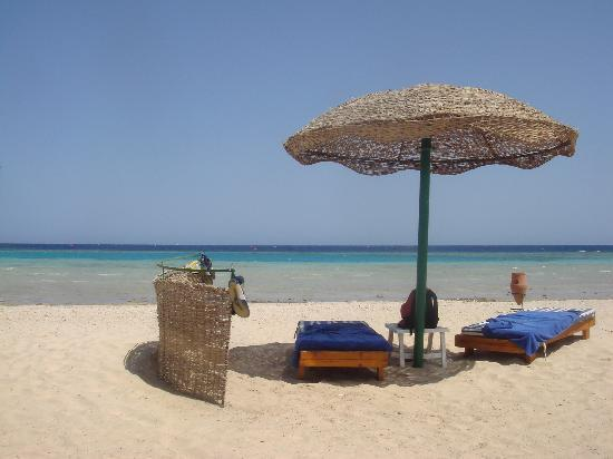 Gorgonia Beach Resort: plage paradisiaque