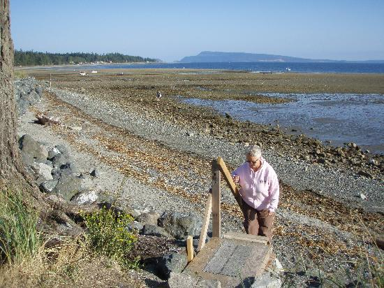 Lighthouse Motel : low tide on Qualicum Bay