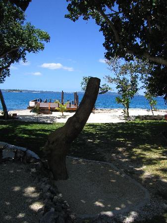 Island Magic Resort: Great Snorkelling off swimming platform