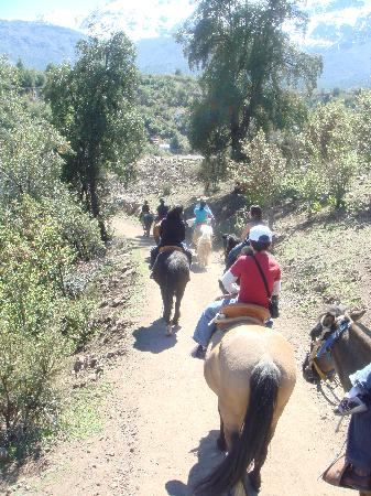 San Francisco Lodge & Spa: Plenty of activities, including horseback riding