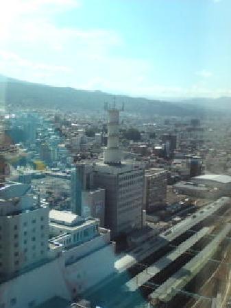 Yamagawaeki Nishiguchi  Washington Hotel: 客室からの景色