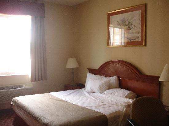 Best Western Jamaica Inn: comfortable room