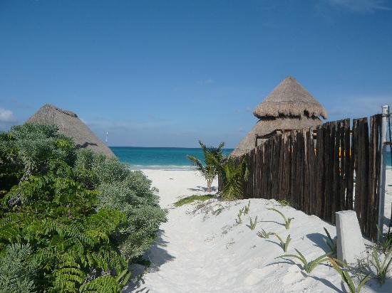 Catalonia Playa Maroma: plage de l' hôtel