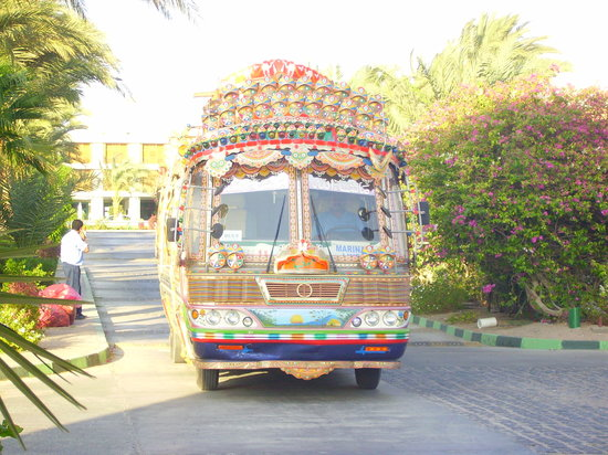 El Gouna, Mısır: the `Bindi bus`