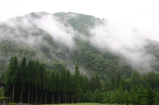 Senju: 宿の周りはそぞろ散歩にちょうど良い風景