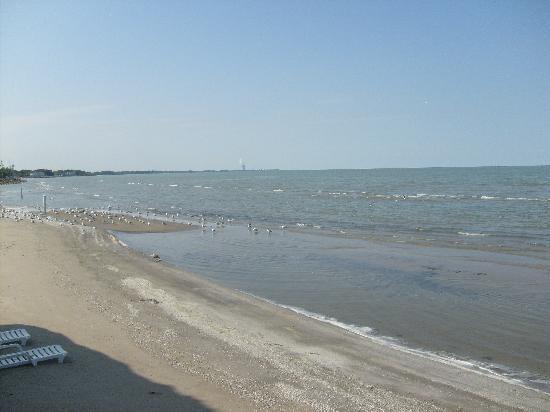 Beachfront Resort : The beach