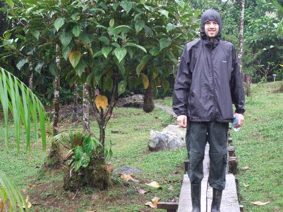 Rara Avis Rainforest Lodge & Reserve: it rains