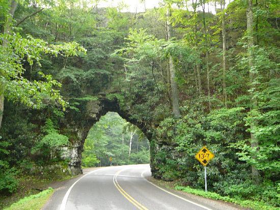 Shady Valley, TN: Backbone Rock Tunnel