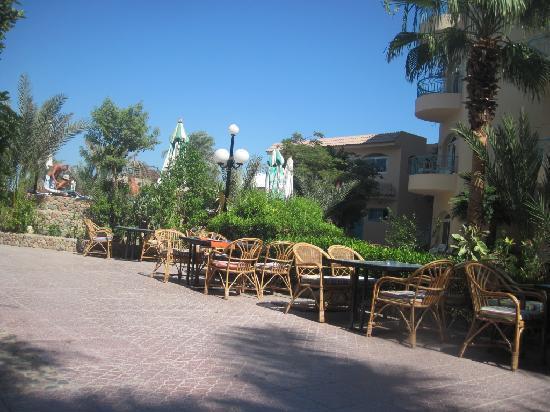 Bella Vista Resort : Garden