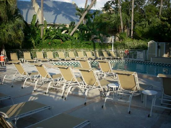Pier House Resort & Spa: Pier House pool view #1