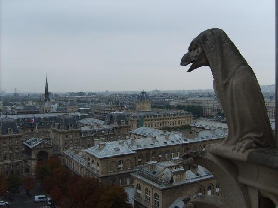 The Gargoyle's view of Paris from the top of Notre Dame Cathedral