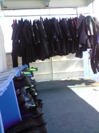 Divers Den: Communal wetsuits/fins/masks in good condition
