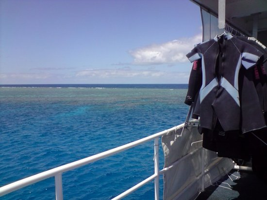 Deep Sea Divers Den Day Trips